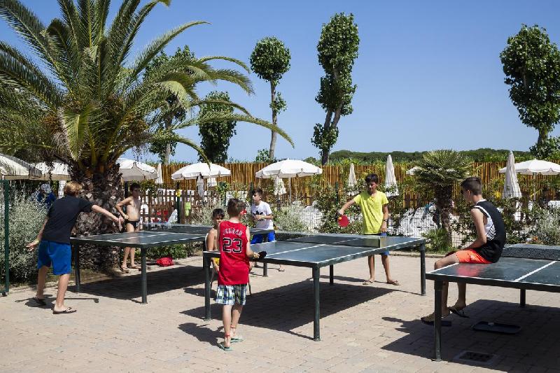 10 ping pong
